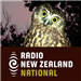 Summer Nights (RNZ)