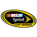 Sprint Cup Qualifying New Hampshire Motor Speedway: Jul 12, 2013