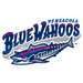 Mobile BayBears at Pensacola Blue Wahoos: May 21, 2013