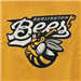 Wisconsin Timber Rattlers at Burlington Bees: May 19, 2013