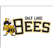 Memphis Redbirds at Salt Lake Bees: May 20, 2013