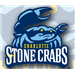 Clearwater Threshers at Charlotte Stone Crabs: May 23, 2013