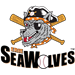 Akron Aeros at Erie SeaWolves: May 24, 2013