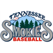 Huntsville Stars at Tennessee Smokies: May 25, 2013
