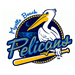 Wilmington Blue Rocks at Myrtle Beach Pelicans: May 25, 2013