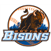 Gwinnett Braves at Buffalo Bisons: Jun 18, 2013
