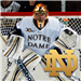 Boston University Terriers at Notre Dame Fighting Irish: Mar 8, 2014