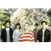 Alvvays on KEXP: Dec 2, 2014
