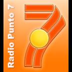 Radio Punto 7 - 90.9 FM Concepción