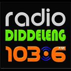 Radio Diddeleng 1036