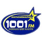 Radio 1001 FM - 100.7 FM Mustafakemalpasa Online