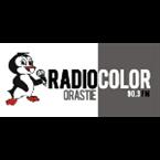 Radio Color Orastie - 90.3 FM Orastie