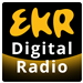 EKR-WDJ Gold