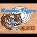 Radio Tigre - 93.9 FM