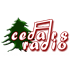 Cedars Radio - VOL plus - 89.9 FM