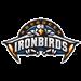 Aberdeen Ironbirds Baseball Network (AIBN)