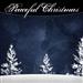 FLN Peaceful Christmas