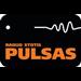 Pulsas - 107.3 FM