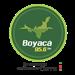 Boyaca 95.6 FM (HIJ30)