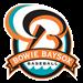Bowie Baysox Baseball Network (BBBN)