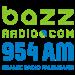 BAZZ AM 954