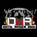 DMR -  Digital Mayhem Radio