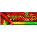 reggae nation radio