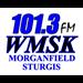 WMSK-FM - 101.3 FM