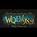 WQLV - 98.9 FM