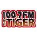 100.7 The Tiger (WTGE)