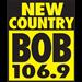 Bob 106.9 (WUBB)