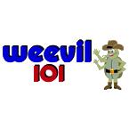 WVVL - Weevil 101 101.1 FM Elba, AL