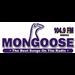 Mongoose FM (WMNG) - 104.9 FM