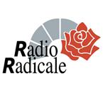 Radio Radicale 100.3 (Politics)