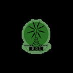 DBS - 590 AM Roseau
