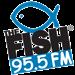 The Fish (KAIM-FM) - 95.5 FM