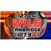WILE - 1270 AM