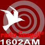 Radio Seagull 1602