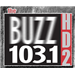 103.1 HD2 The Buzz (WIRK-HD2)