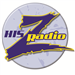 The Z (W216BJ) - 91.1 FM
