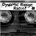 Dynamic Range Radio
