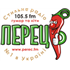 Stilnoe Radio (Perec.FM) (Стильное радио (Перец ФМ)) - 105.5 FM