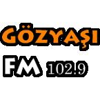 Gozyasi FM 1029