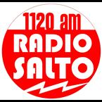 Salto 1120