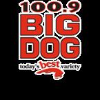 Big Dog 1009