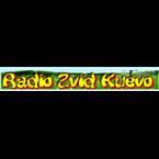 Radio Zvizd 1043
