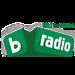 bTV Radio - 101.1 FM