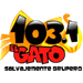 El Gato 103.1 (KDLD)
